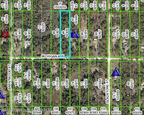 0 Michigan Avenue, Weeki Wachee, FL 34613 (MLS #2200764) :: The Hardy Team - RE/MAX Marketing Specialists
