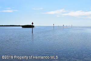 2448 Sunset Vista Drive, Spring Hill, FL 34607 (MLS #2200924) :: Premier Home Experts