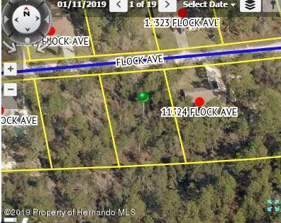 00 Flock Avenue, Weeki Wachee, FL 34613 (MLS #2201703) :: The Hardy Team - RE/MAX Marketing Specialists
