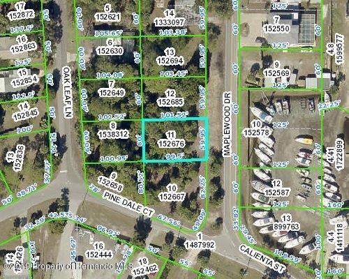 0 Maplewood Drive, Hernando Beach, FL 34607 (MLS #2201800) :: The Hardy Team - RE/MAX Marketing Specialists