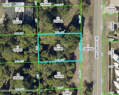 0 Maplewood Drive, Hernando Beach, FL 34607 (MLS #2201802) :: The Hardy Team - RE/MAX Marketing Specialists