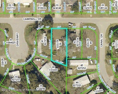 00 Campbell Drive, Brooksville, FL 34601 (MLS #2201839) :: The Hardy Team - RE/MAX Marketing Specialists