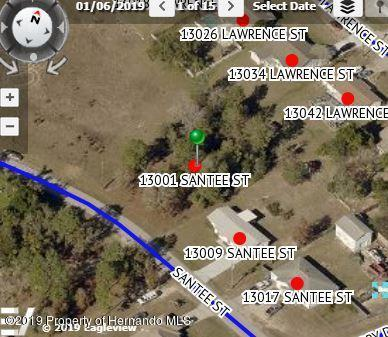 13001 Santee Street, Spring Hill, FL 34609 (MLS #2201891) :: The Hardy Team - RE/MAX Marketing Specialists