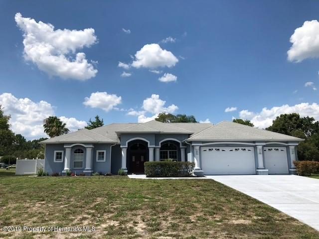 14163 Nugent Circle, Spring Hill, FL 34609 (MLS #2202179) :: The Hardy Team - RE/MAX Marketing Specialists