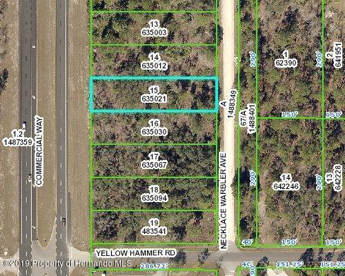 15 Lot Necklace Warbler Avenue, Weeki Wachee, FL 34614 (MLS #2202250) :: The Hardy Team - RE/MAX Marketing Specialists