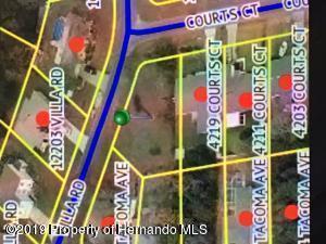 4227 Villa Road, Spring Hill, FL 34609 (MLS #2202734) :: The Hardy Team - RE/MAX Marketing Specialists