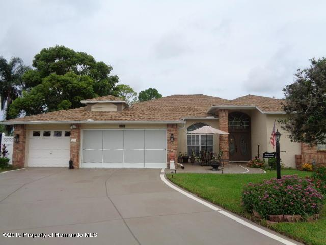 7423 Blue Skies Drive, Spring Hill, FL 34606 (MLS #2202921) :: The Hardy Team - RE/MAX Marketing Specialists