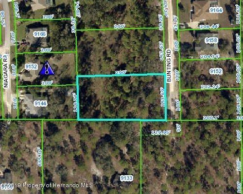 00 Bunting Road, Weeki Wachee, FL 34613 (MLS #2203147) :: The Hardy Team - RE/MAX Marketing Specialists