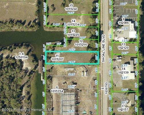 4055 Shoal Line Boulevard, Hernando Beach, FL 34607 (MLS #2203204) :: The Hardy Team - RE/MAX Marketing Specialists