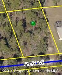 Lot 7 Gypsy, Weeki Wachee, FL 34613 (MLS #2204003) :: The Hardy Team - RE/MAX Marketing Specialists