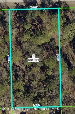 Lot 9 Gyrafalcon Avenue, Weeki Wachee, FL 34613 (MLS #2204004) :: The Hardy Team - RE/MAX Marketing Specialists