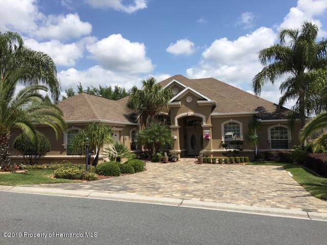 2353 Fairskies Drive, Spring Hill, FL 34606 (MLS #2204218) :: The Hardy Team - RE/MAX Marketing Specialists