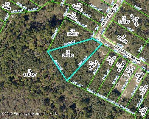 Address Not Published, Webster, FL 33597 (MLS #2204591) :: The Hardy Team - RE/MAX Marketing Specialists