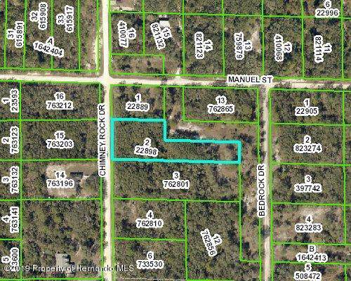 Address Not Published, Webster, FL 33597 (MLS #2204641) :: The Hardy Team - RE/MAX Marketing Specialists