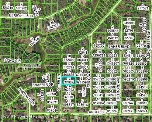 0 Otter Drive, Ridge Manor, FL 33523 (MLS #2204670) :: The Hardy Team - RE/MAX Marketing Specialists