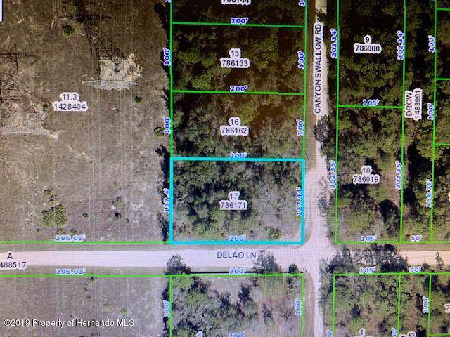 00000 Canyon Swallow Road #7, Brooksville, FL 34614 (MLS #2204684) :: The Hardy Team - RE/MAX Marketing Specialists