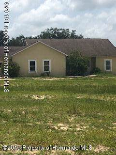 7126 Goodway Drive, Brooksville, FL 34602 (MLS #2204724) :: The Hardy Team - RE/MAX Marketing Specialists