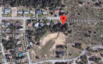 0 Delbarton Street, Spring Hill, FL 34609 (MLS #2204777) :: The Hardy Team - RE/MAX Marketing Specialists