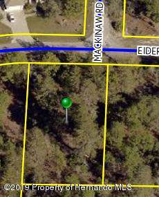 Lot 5 Eider Avenue, Weeki Wachee, FL 34613 (MLS #2204806) :: The Hardy Team - RE/MAX Marketing Specialists
