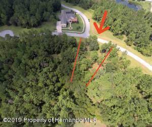 1597 Cedar Ridge Drive, Brooksville, FL 34601 (MLS #2205116) :: The Hardy Team - RE/MAX Marketing Specialists