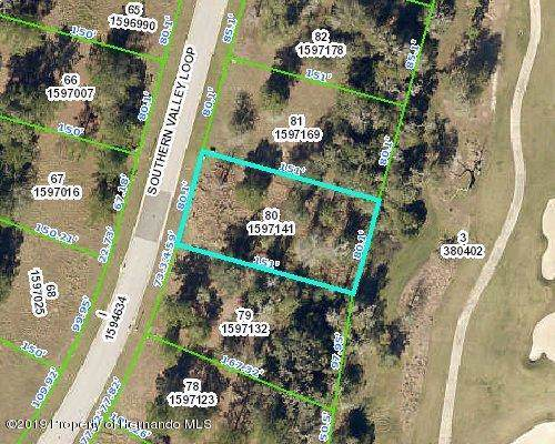 0000 Southern Valley Loop, Brooksville, FL 34601 (MLS #2205192) :: The Hardy Team - RE/MAX Marketing Specialists