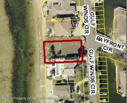 0 Gulf Winds Circle Lots 15 & 12B, Hernando Beach, FL 34607 (MLS #2205218) :: Premier Home Experts
