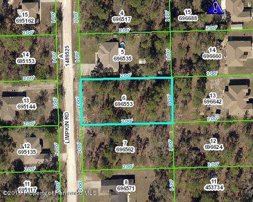 0 Limpkin Road, Weeki Wachee, FL 34614 (MLS #2205231) :: Premier Home Experts