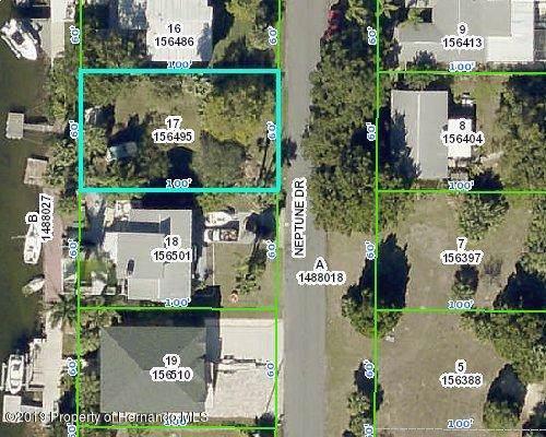 4493 Neptune Drive, Hernando Beach, FL 34607 (MLS #2205310) :: The Hardy Team - RE/MAX Marketing Specialists
