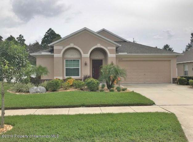 10042 Ives Loop, Hudson, FL 34667 (MLS #2205374) :: The Hardy Team - RE/MAX Marketing Specialists
