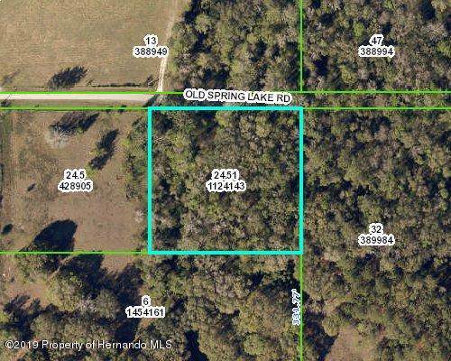 00 Old Spring Lake Road, Brooksville, FL 34602 (MLS #2205399) :: The Hardy Team - RE/MAX Marketing Specialists