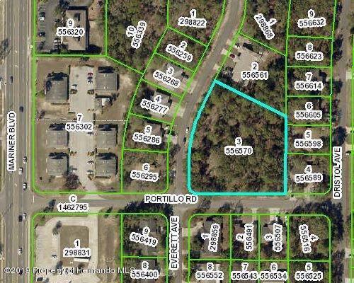 Lot 3 Everett Avenue, Spring Hill, FL 34609 (MLS #2205600) :: The Hardy Team - RE/MAX Marketing Specialists
