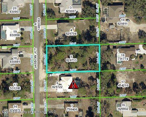 0 Jasbow Junction, Brooksville, FL 34613 (MLS #2205638) :: The Hardy Team - RE/MAX Marketing Specialists