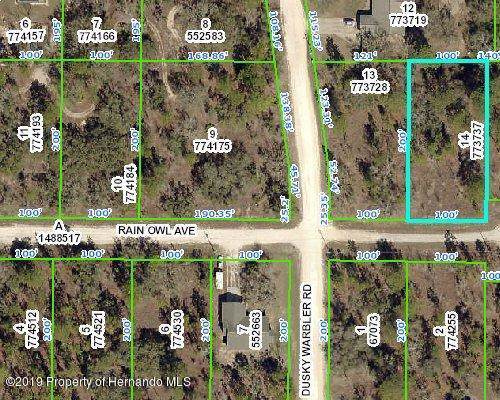 13411 Rain Owl Avenue, Brooksville, FL 34614 (MLS #2205822) :: 54 Realty