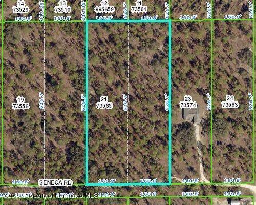 13191 Seneca Road, Brooksville, FL 34614 (MLS #2205830) :: 54 Realty