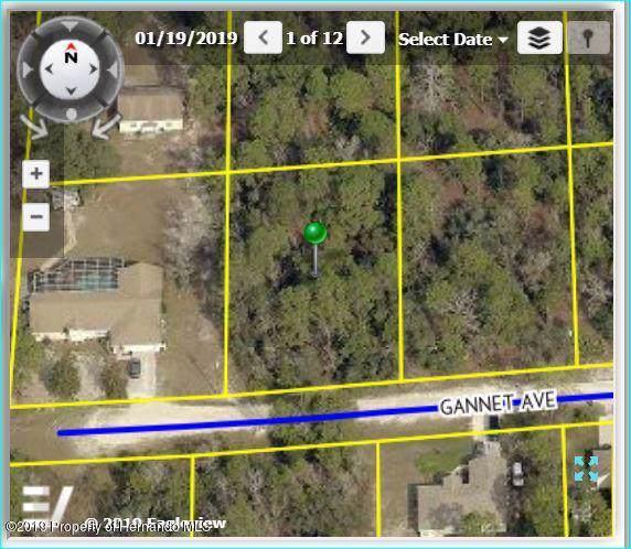 0 Gannett Avenue, Brooksville, FL 34613 (MLS #2205834) :: 54 Realty