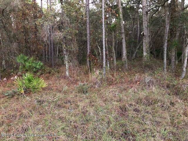 0 Marsh Quail Road, Weeki Wachee, FL 34614 (MLS #2205987) :: 54 Realty