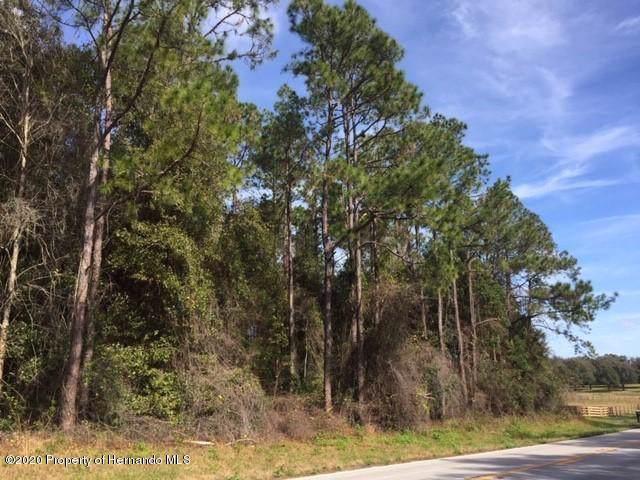 0 Powell Road, Brooksville, FL 34602 (MLS #2206440) :: The Hardy Team - RE/MAX Marketing Specialists
