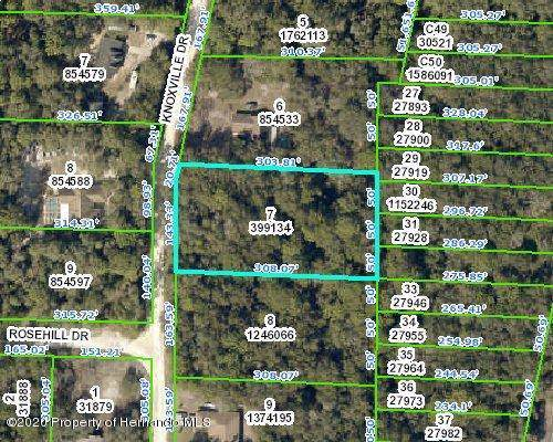 0 Knoxville Drive, Webster, FL 33597 (MLS #2206478) :: The Hardy Team - RE/MAX Marketing Specialists