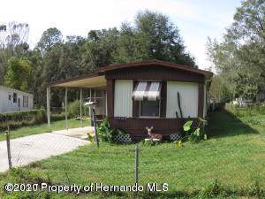 21274 Canal Drive, Brooksville, FL 34601 (MLS #2206534) :: 54 Realty