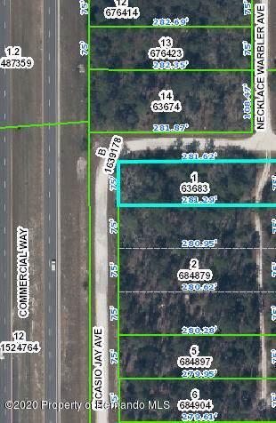 0 Nicasio Jay Avenue, Weeki Wachee, FL 34614 (MLS #2206559) :: 54 Realty