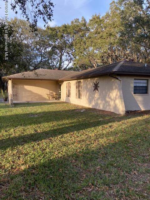 1266 Antilles Lane, Spring Hill, FL 34608 (MLS #2206564) :: The Hardy Team - RE/MAX Marketing Specialists