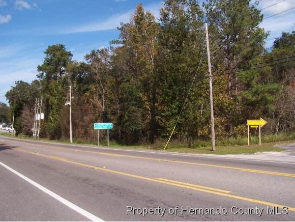 0 Ponce De Leon Boulevard, Brooksville, FL 34601 (MLS #2206693) :: The Hardy Team - RE/MAX Marketing Specialists