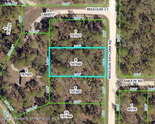 15047 Missouri Skylark Road, Weeki Wachee, FL 34614 (MLS #2206743) :: 54 Realty