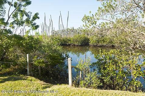 00 Sunset Vista Drive, Aripeka, FL 34679 (MLS #2206819) :: 54 Realty