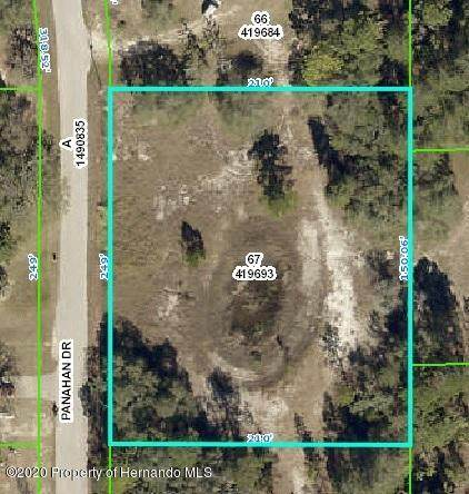 0 Panahan Drive, Weeki Wachee, FL 34613 (MLS #2208541) :: Premier Home Experts