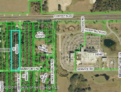0 Frankfort Road, Brooksville, FL 34601 (MLS #2208766) :: Premier Home Experts