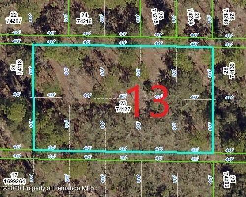 0 Rock Duck Avenue, Weeki Wachee, FL 34614 (MLS #2209533) :: Premier Home Experts