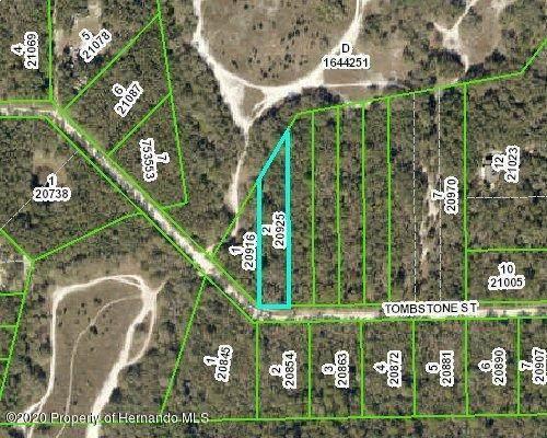 0000 Tombstone Street, Webster, FL 33597 (MLS #2209557) :: Premier Home Experts