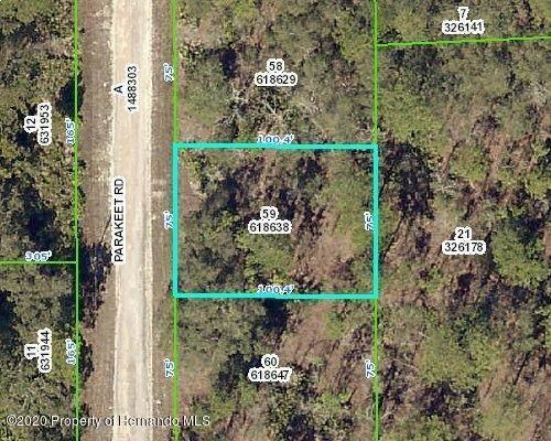 0 Parakeet Road, Weeki Wachee, FL 34614 (MLS #2210036) :: Premier Home Experts