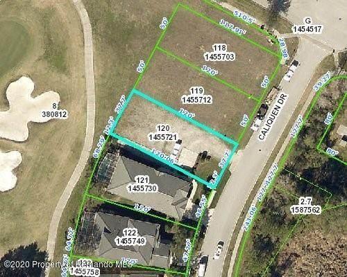 0 Caliquen Drive, Brooksville, FL 34604 (MLS #2210337) :: Premier Home Experts